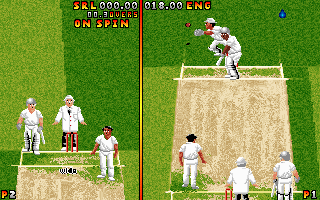 Ian Botham&#39s Cricket