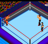 Fire Pro Wrestling - 2nd Bout