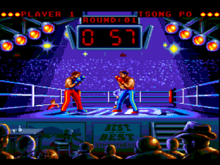 Sega Genesis Best of the best Championship Karate