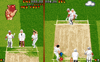 DOS Ian Botham's Cricket