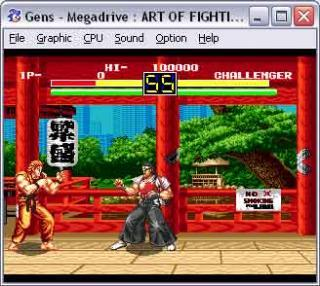 Sega Genesis Art of Fighting