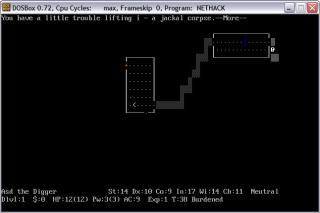 DOS Nethack