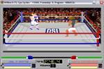 4d Boxing Deluxe
